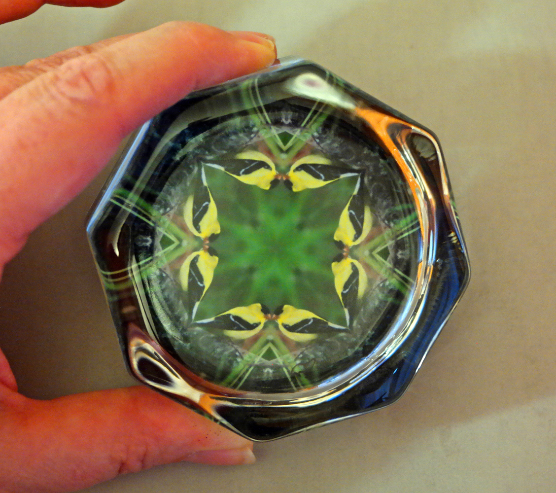 Goldfinch Octagon Glass Paperweight Geometric Kaleidoscope Mandala Bird Lover Unique Boss Gift Coworker Gift Teacher Gift Ring of Gold
