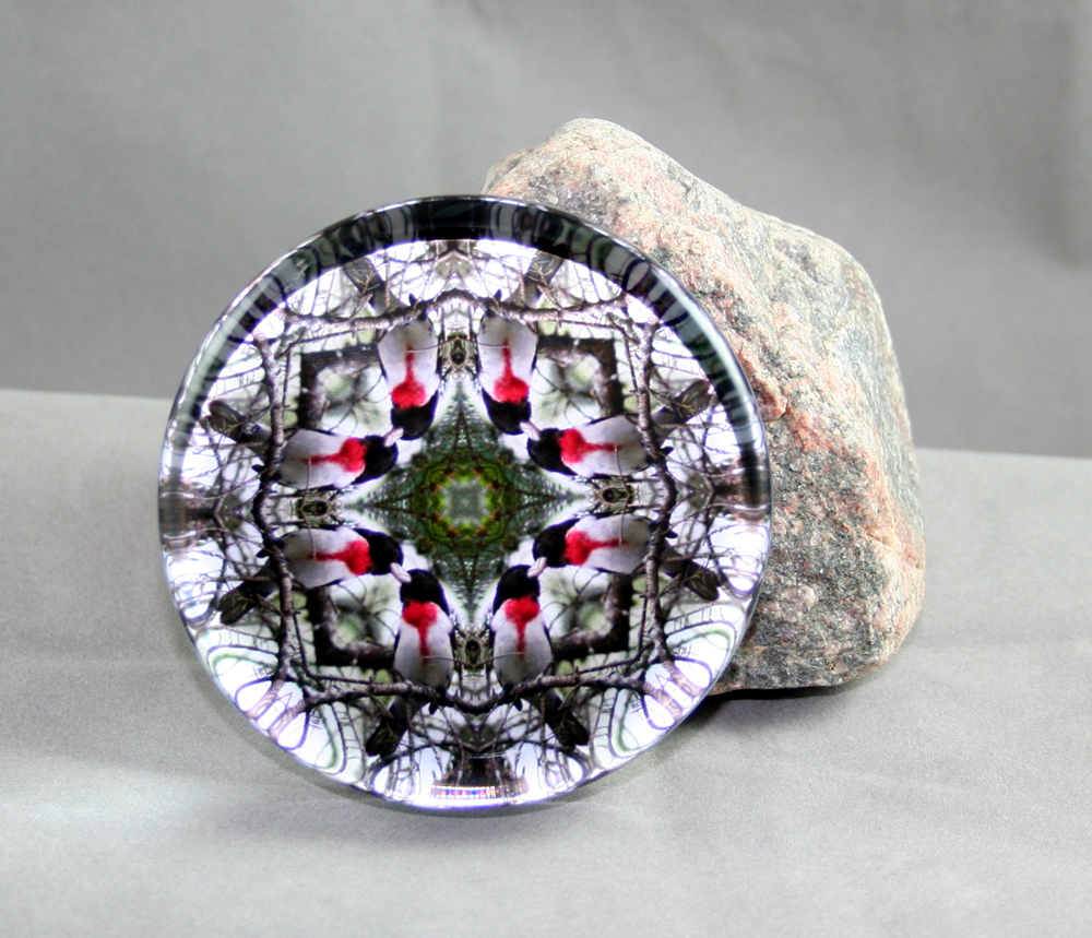 Grosbeak Glass Paperweight Geometric Mandala Kaleidoscope Bleeding Heart