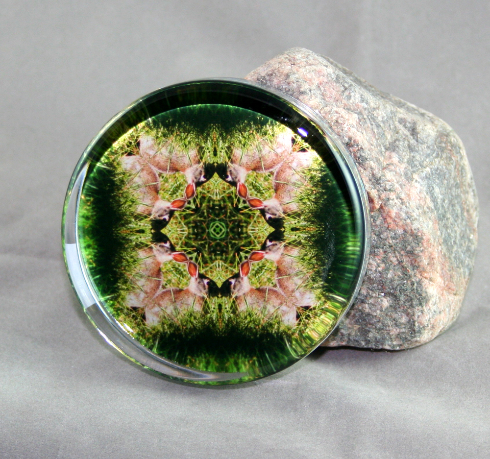 Bunny Rabbit Glass Paperweight Sacred Geometry Mandala Kaleidoscope Bashful