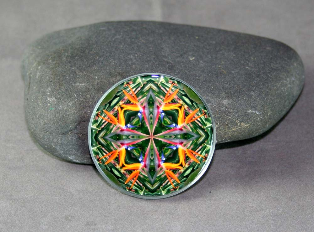 Bird of Paradise Magnet Glass Sacred Geometry Mandala Kaleidoscope Feathered Fauna