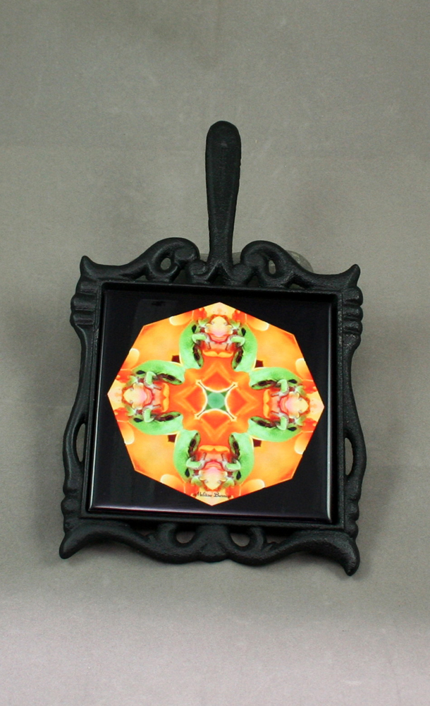 Frog Cast Iron Ceramic Tile Trivet Sacred Geometry Mandala Kaleidoscope Fortunate Finnegan