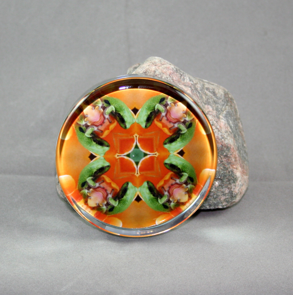 Frog Glass Paperweight Kaleidoscope Sacred Geometry Mandala Fortunate Finnegan
