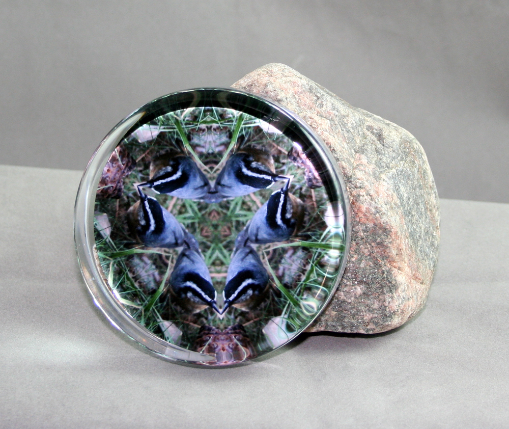 Nuthatch Glass Paperweight Sacred Geometry Mandala Kaleidoscope Nestling Nuthatch