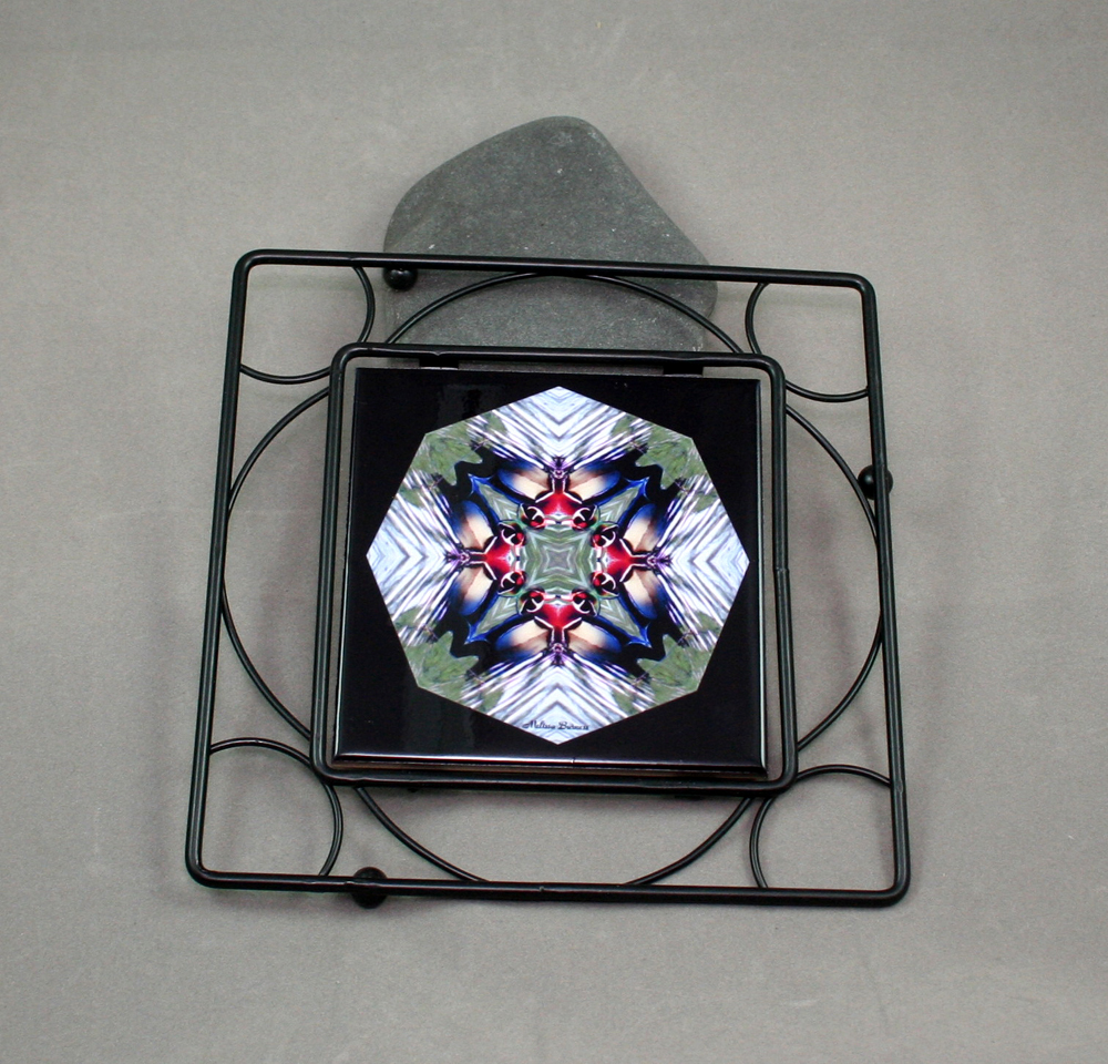 Wood Duck Black Iron Ceramic Tile Trivet Sacred Geometry Mandala Kaleidoscope Wood Duck Wonder