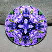 Dragonfly Decorative Magnet Boho Mandala New Age Sacred Geometry Kaleidoscope Pure Passion