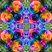 Psychedelic Kaleidoscope Screensaver Rainbow Rose Mandala Boho Chic Bohemian New Age Sacred Geometry Rainbow Rose 303
