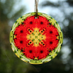 Daisy Suncatcher Boho Chic Mandala Sacred Geometry New Age Kaleidoscope Fringe Benefits