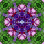 Screensaver Chakra Mandala Kaleidoscope Psychedelic Zen Meditation Eternal Affection