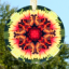 Butterfly Suncatcher Glass Mandala Sacred Geometry Kaleidoscope Warm Embrace