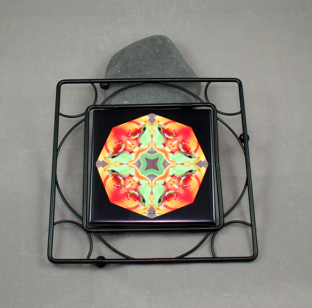 Frog Black Iron Ceramic Tile Trivet Sacred Geometry