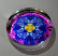 Forget Me Not Paperweight