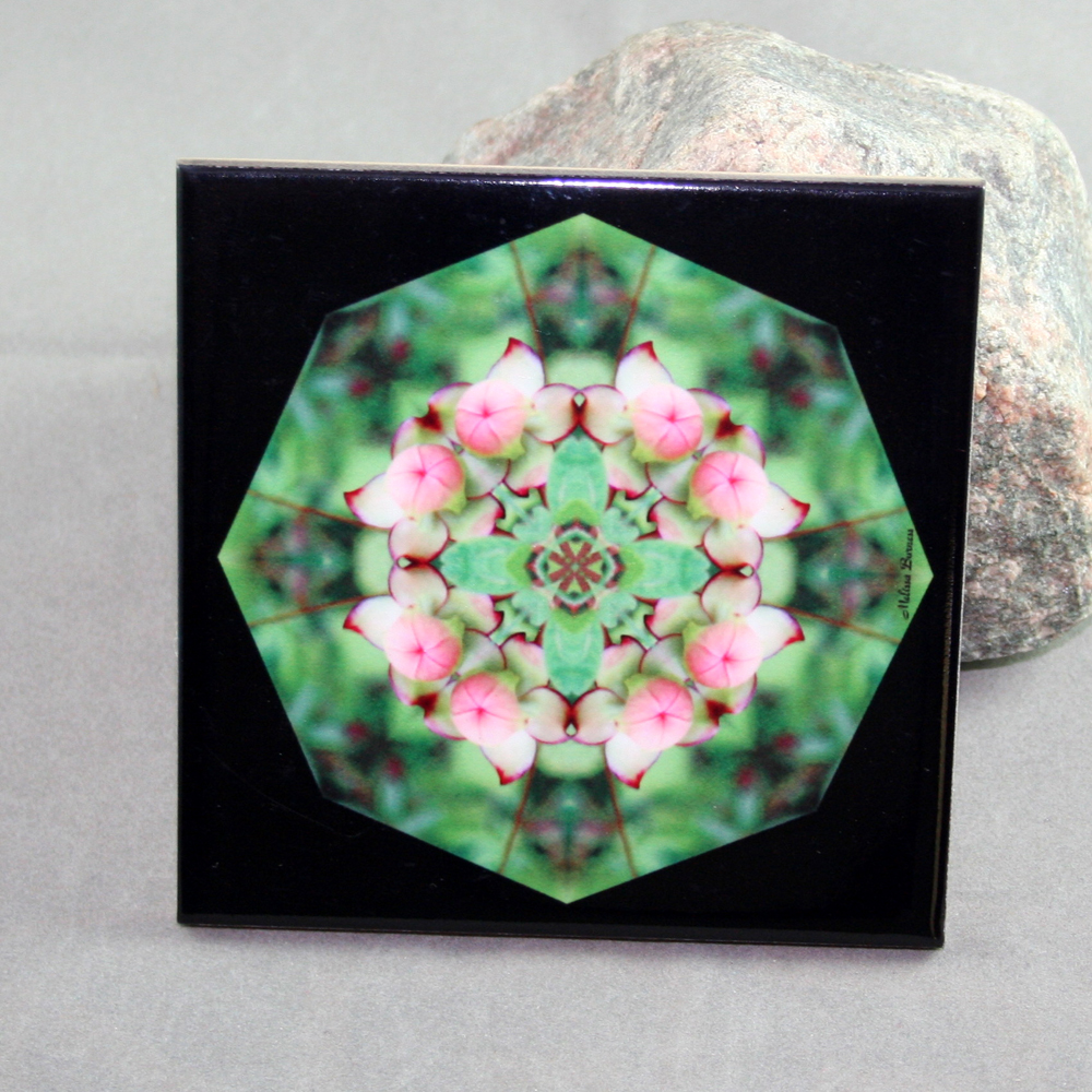 Pitcher Plant Decorative Ceramic Tile Sacred Geometry