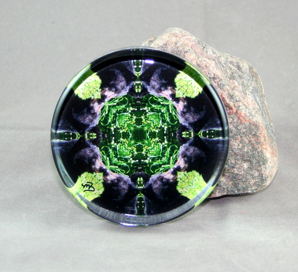 Bear Glass Paperweight Kaleidoscope Mandala Bear Essentials