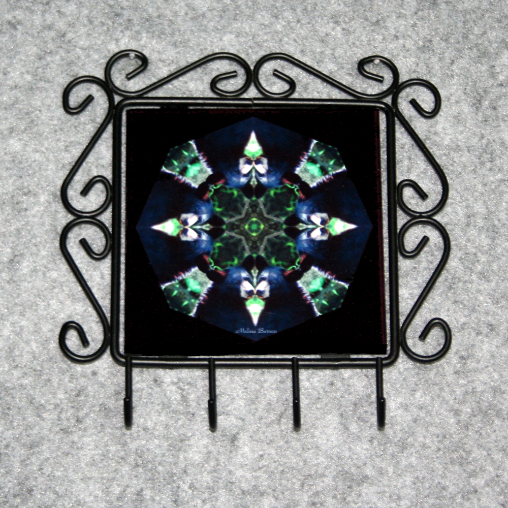 Bear Organizer Rack Jewelry Rack Key Rack Utensil Rack Boho Chic New Age Sacred Geometry Kaleidoscope Black Beauty