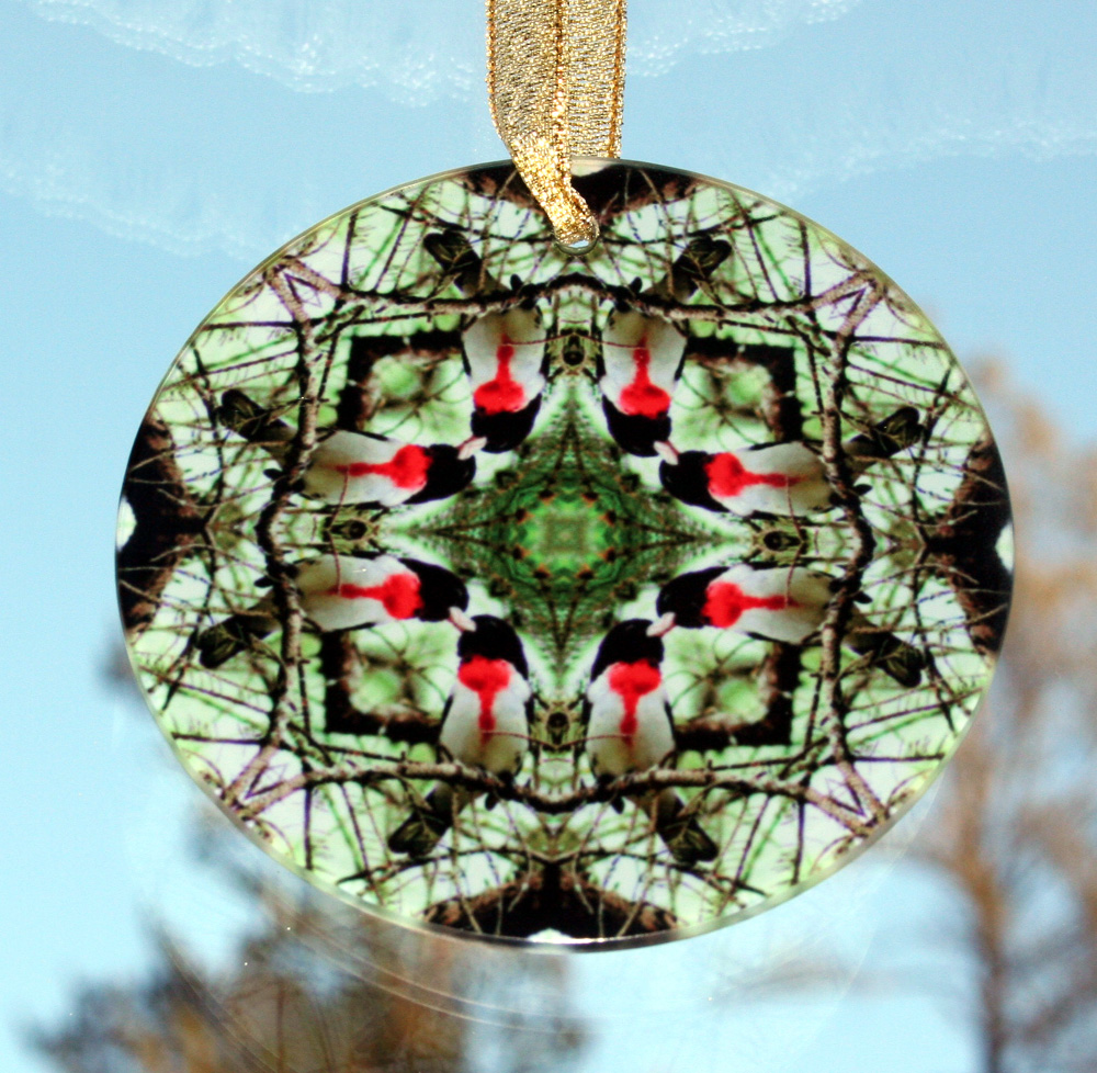 Grosbeak Glass Suncatcher Geometric Mandala Kaleidoscope Bleeding Heart