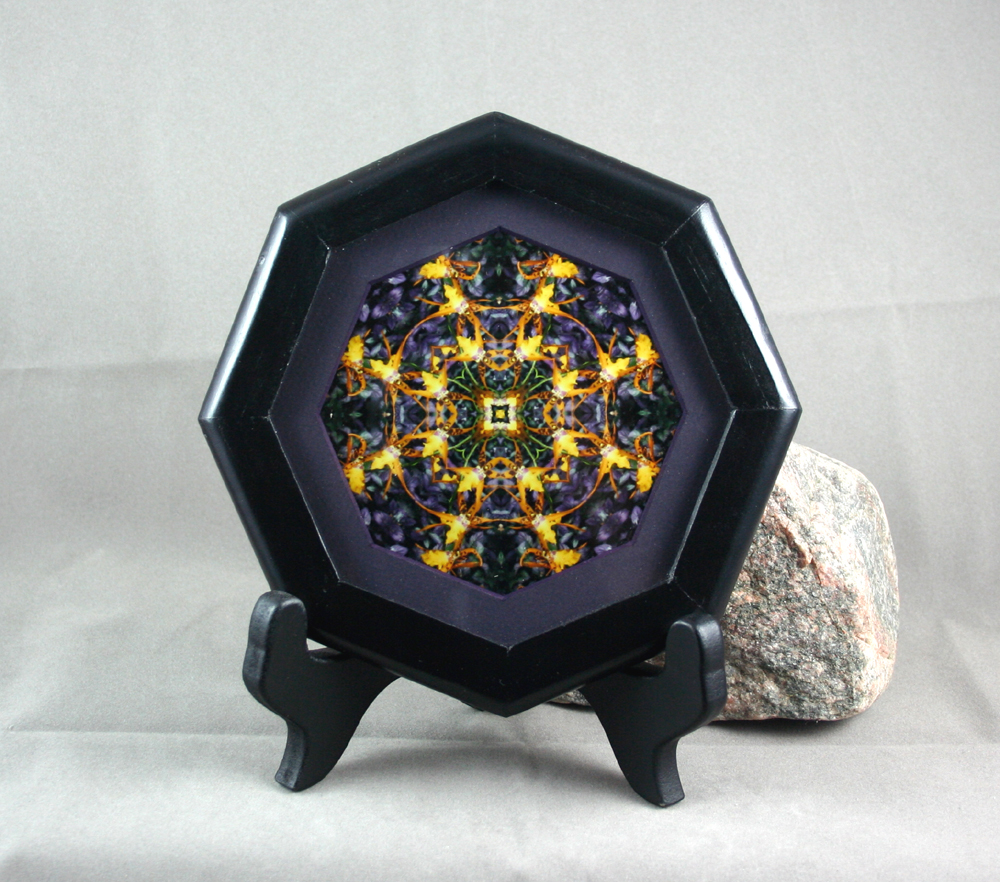 Orchid Fine Art Sacred Geometry Kaleidoscope Photograph Framed Calliope