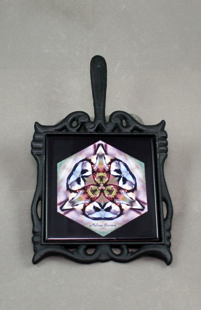 Chickadee Cast Iron Ceramic Tile Trivet Sacred Geometry Mandala Kaleidoscope Chipper Chickadee