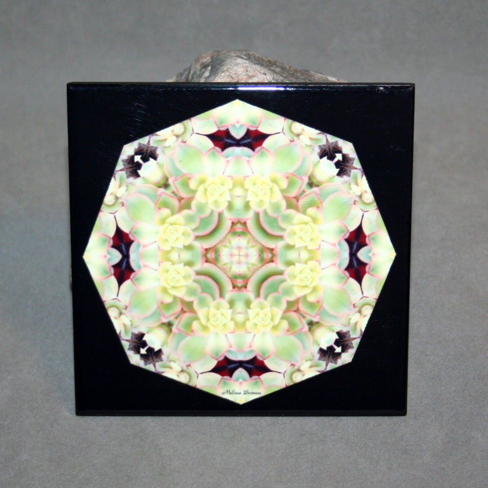 Succulent Decorative Ceramic Tile Sacred Geometry Mandala Kaleidoscope Enduring Harmony