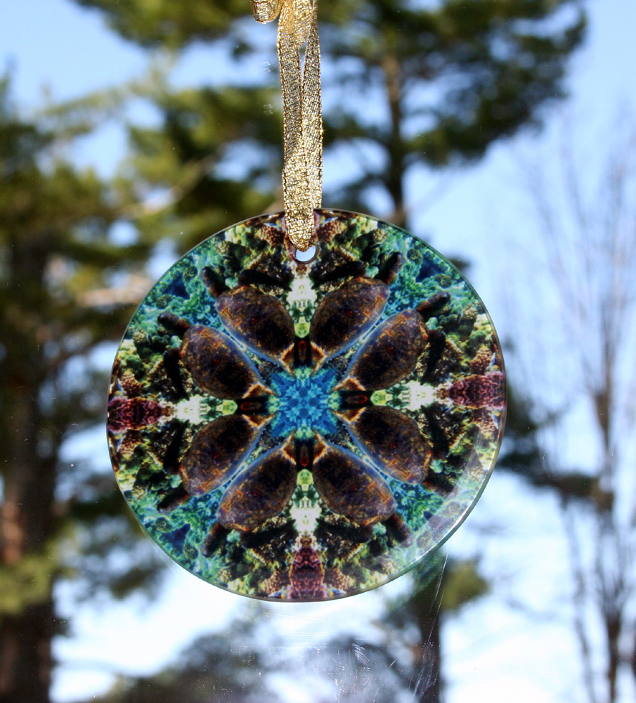 Sea Turtle Glass Suncatcher Geometric Mandala Kaleidoscope Gordan Green