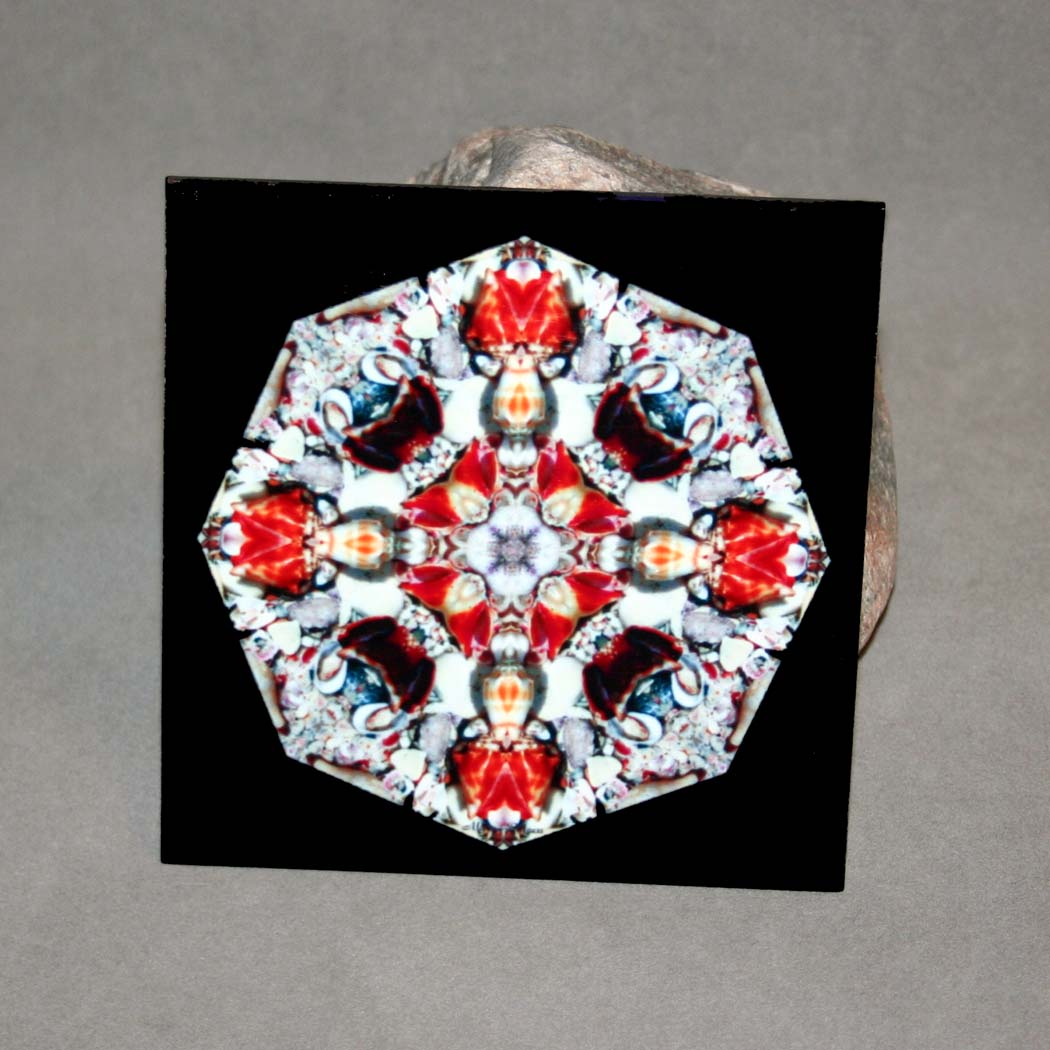 Seashell Decorative Ceramic Tile Mandala Sacred Geometry Kaleidoscope Kates Bliss