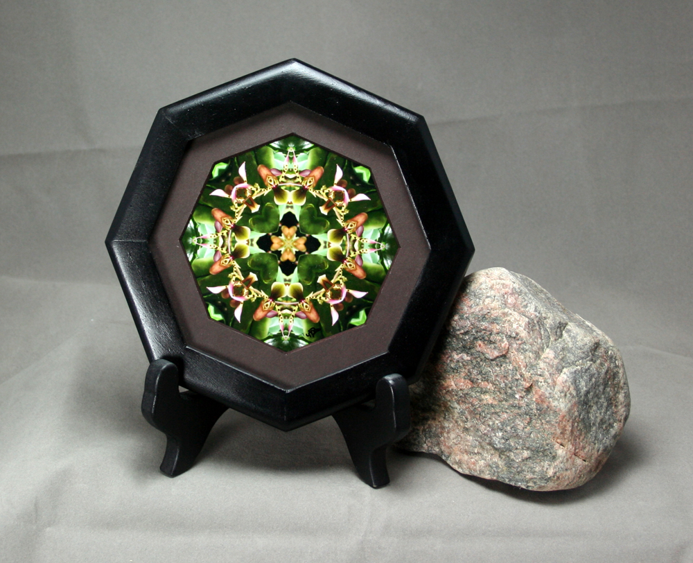 Orchid Fine Art Photograph Sacred Geometry Kaleidoscope Framed My Heart's Desire