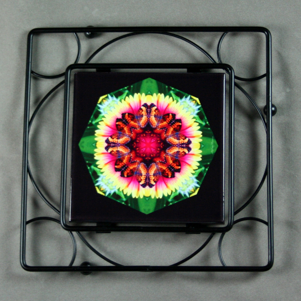 Butterfly Trivet Black Iron Mandala Sacred Geometry Kaleidoscope Warm Embrace