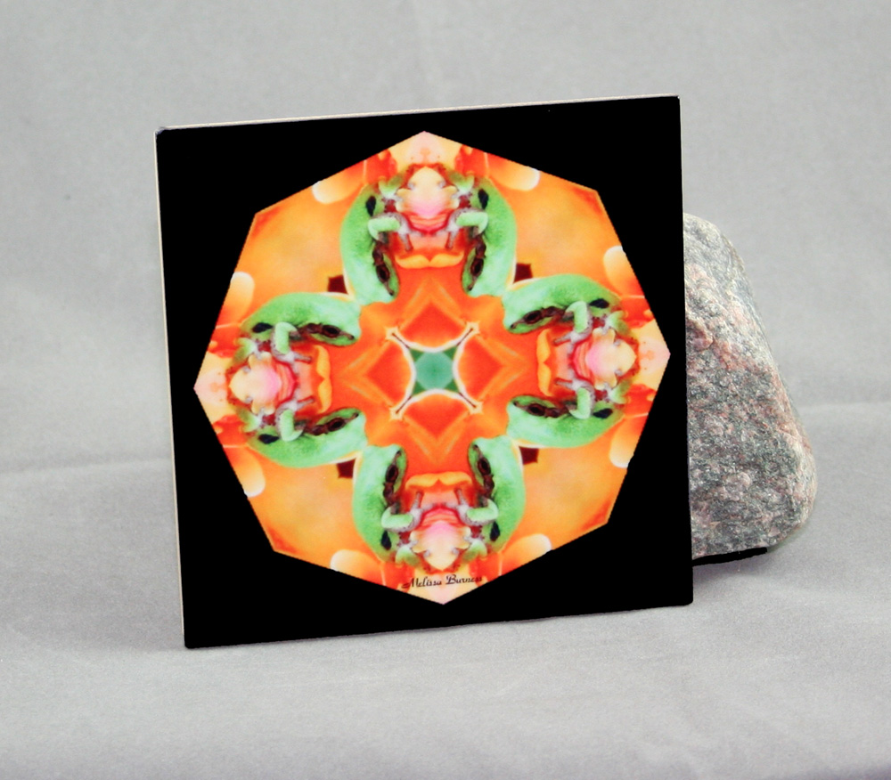 Frog Decorative Ceramic Tile Coaster Kaleidoscope Fortunate Finnegan
