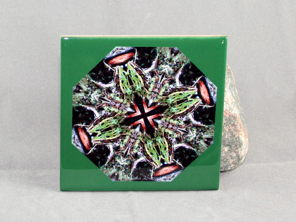 Frog Decorative Ceramic Tile Coaster Geometric Kaleidoscope Trivet Hip Hop