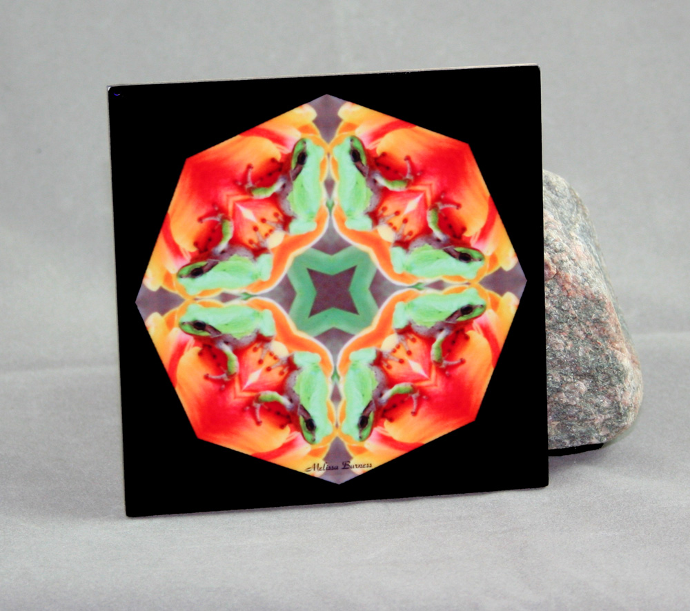 Frog Decorative Ceramic Tile Coaster Trivet Kaleidoscope Lucky Charm
