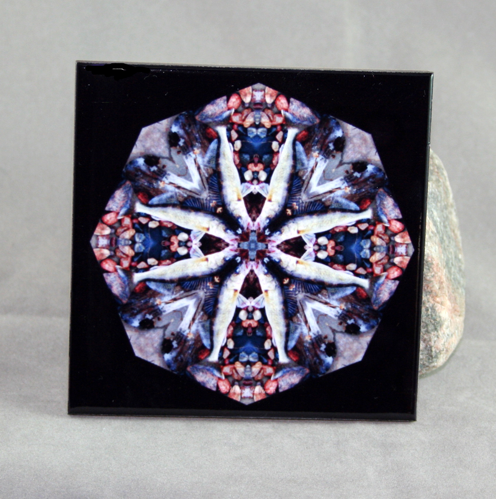 Walleye Fish Decorative Ceramic Tile Coaster Trivet Kaleidoscope Geometric Willy Walleye