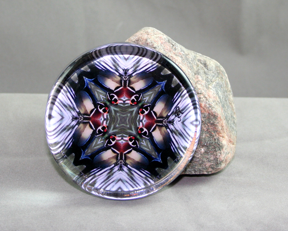 Wood Duck Glass Paperweight Kaleidoscope Sacred Geometry Mandala Wood Duck Wonder