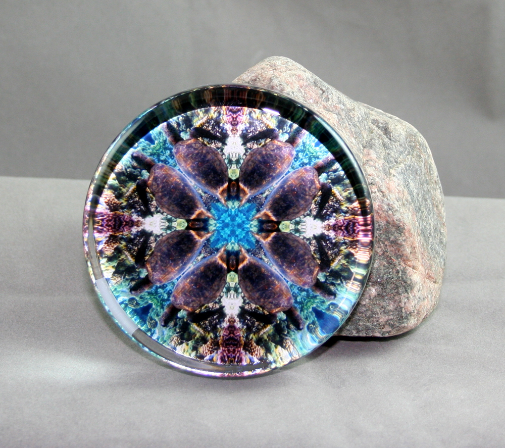 Turtle Glass Paperweight Sacred Geometry Mandala Kaleidoscope Gordan Green