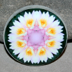Lotus Flower Decorative Magnet Boho Mandala New Age Sacred Geometry Kaleidoscope Profound Soul