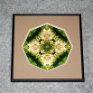 Bunny Rabbit Sacred Geometry Wall Decor Mandala Wall Art Bashful Framed