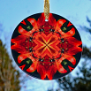 Dragonfly Suncatcher Boho Chic Mandala Sacred Geometry New Age Kaleidoscope Blaze of Glory
