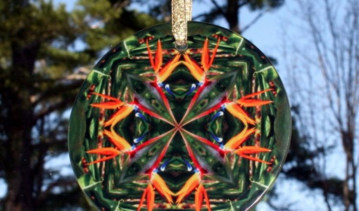 Bird of Paradise Glass Sun Catcher Mandala Geometric Kaleidoscope Feathered Fauna