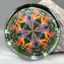 Bird of Paradise Glass Paperweight Kaleidoscope Sacred Geometry Mandala Feathered Fauna