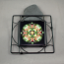 Lady Slipper Black Iron Ceramic Tile Trivet Sacred Geometry Mandala Kaleidoscope My Hearts Desire